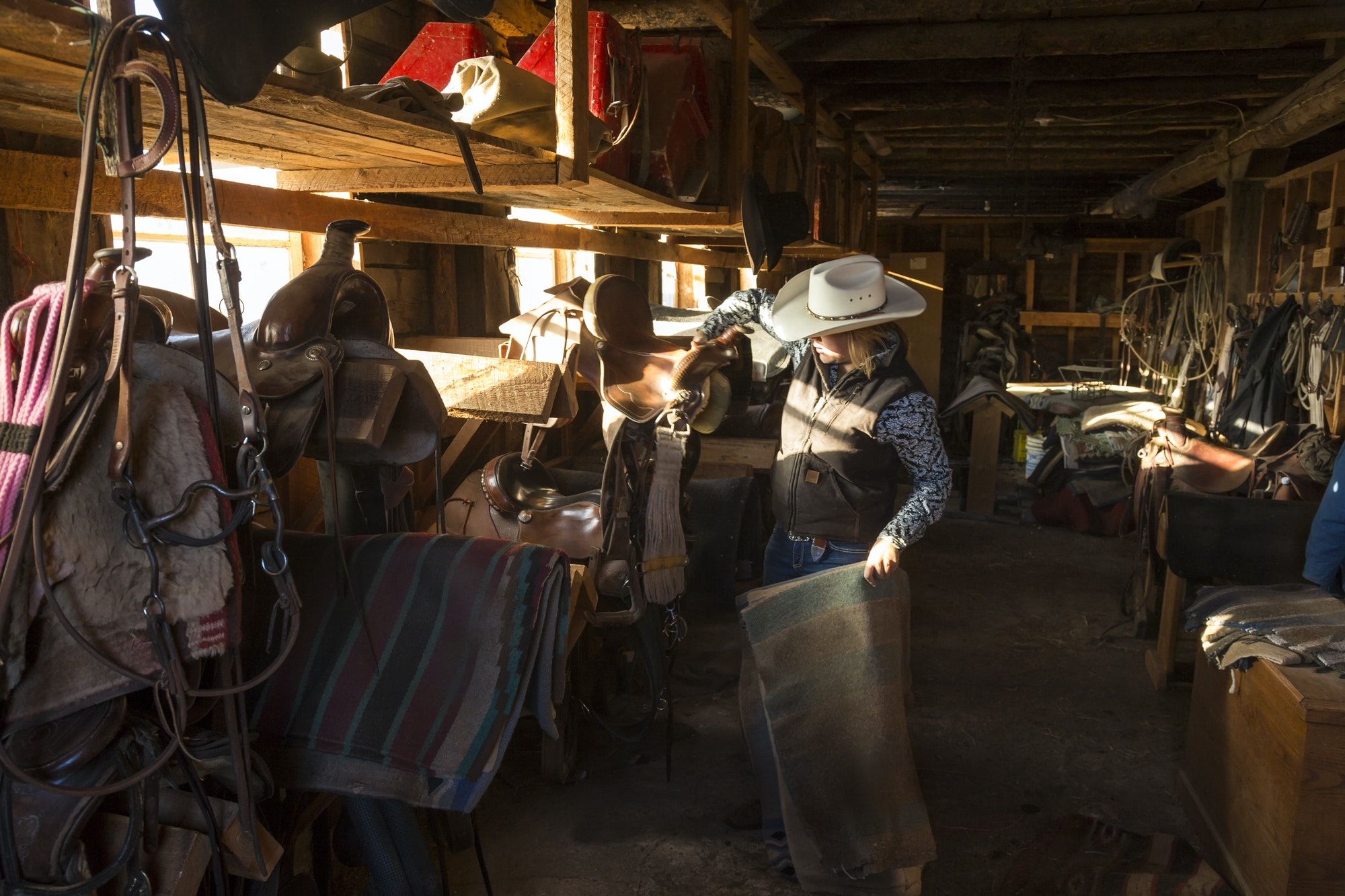 Cowboy standing in stable with racks of riding tack and saddles, holding leather saddle and striped